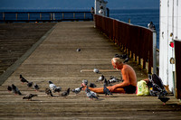 Homeless Man With Birds